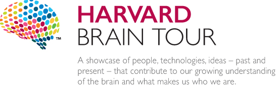 Harvard University Brain Tour