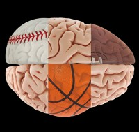 Your Brain on Sports